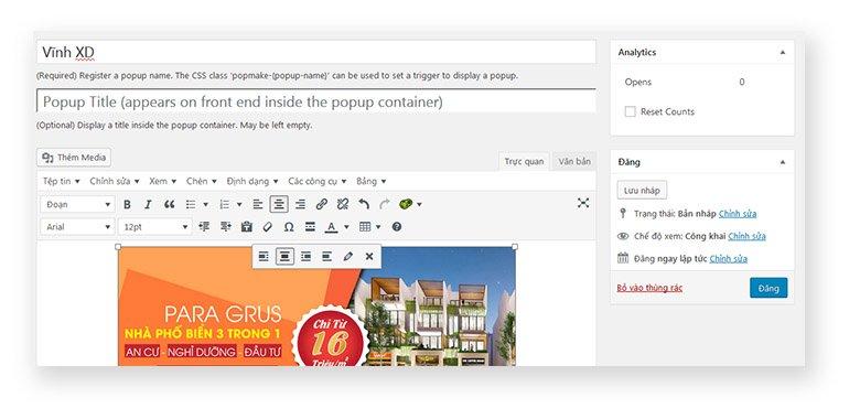 Hướng Dẫn Tạo Popup Cho Website Wordpress 1