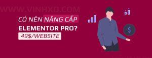 Read more about the article Có Nên Mua Elementor Pro?